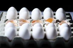 Tuorlo fra molte uova bianche Fotografia Stock Libera da Diritti