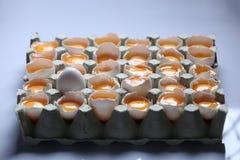 Tuorlo fra molte uova bianche Immagini Stock Libere da Diritti