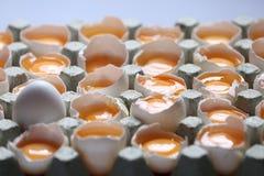 Tuorlo fra molte uova bianche Fotografie Stock