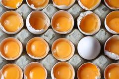 Tuorlo fra molte uova bianche Fotografie Stock Libere da Diritti