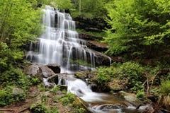Tupavica vattenfall, Stara berg, Serbien royaltyfri bild