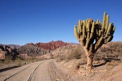 tupiza Боливии Стоковые Изображения