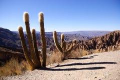 Tupiza, Bolivia Stock Photography