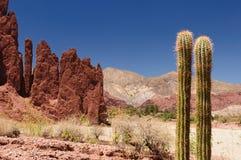 Tupiza - campagna del beautifull in Bolivia Immagine Stock Libera da Diritti