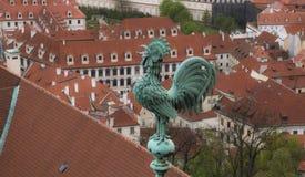 Tupp överst ett tak i Prague Arkivfoto