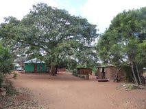 Tur för zambia för Afrika bykojor royaltyfri bild