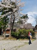 tur till Japan Fotografering för Bildbyråer