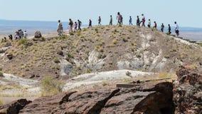 Tur till och med förstenad skog i Arizona Arkivfoto