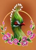Turaco luminoso dell'uccello Fotografie Stock