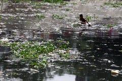 Turag-Flussverseuchung bei Tongi Stockfotos