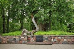 Turaida罗斯坟墓在锡古尔达附近的Turaida 拉脱维亚 免版税库存图片