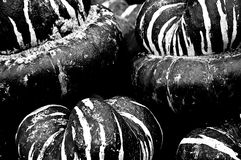 Turban Squash in Black and White. A stack of Turban Squash in black and white Stock Photography