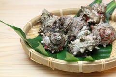 Turbante de cuernos en el colador de bambú Fotografía de archivo libre de regalías