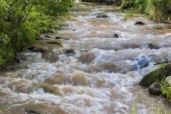 Turbid water stream Stock Photos