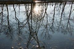 Turbigo milan lombardy italy Reflexion av en spaljé i vattnet av Naviglio den stora floden royaltyfri fotografi