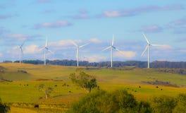 Turbina da exploração agrícola de vento no fundo do céu azul Campo amarelo do outono Exploração agrícola, cavalo, vacas imagem de stock