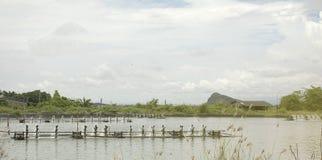 Turbina de la aireación del agua en el cultivo acuático Negocio del criadero del camarón y de los pescados Imagenes de archivo