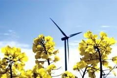 Turbina de viento, campo amarillo. foto de archivo