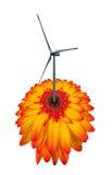 Turbina de viento como una flor aislada en blanco Fotografía de archivo libre de regalías