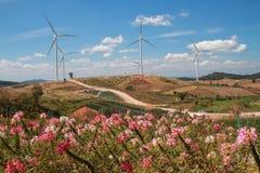 Turbina del paesaggio di mattina sul fiore e sulla montagna Immagine Stock Libera da Diritti