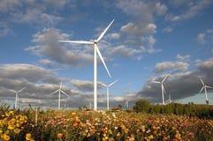 Turbina eólica na flor do campo e nebuloso fotografia de stock royalty free