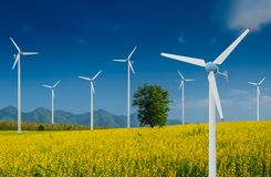 Turbina eólica para a energia alternativa no campo amarelo das flores do Crotalaria com polos de poder Imagem de Stock