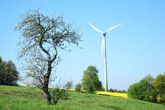 Turbina e árvore de vento. Fotos de Stock