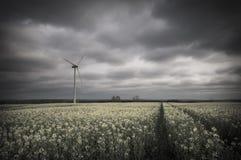 turbina śródpolny zielony wiatr Obraz Stock
