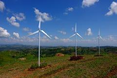 Turbinas de la energía eólica en campo amarillo de la violación Imagen de archivo