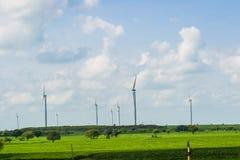 Turbinas de vento, campo amarelo Imagens de Stock