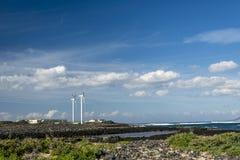 Turbinas de vento, campo amarelo Fotografia de Stock