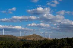 Turbinas de vento, campo amarelo Energia renovável Imagens de Stock