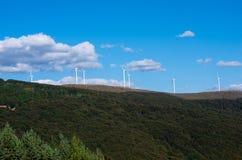 Turbinas de vento, campo amarelo Energia renovável Fotos de Stock