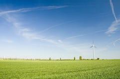Turbinas de vento e fie do rapeseed imagens de stock