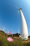 Turbinas de vento que geram a eletricidade e a flor Imagem de Stock
