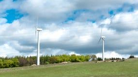 Turbinas de viento, campo amarillo Fotografía de archivo