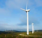 Turbinas de viento, campo amarillo Fotos de archivo