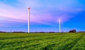 Turbinas de viento, campo amarillo Foto de archivo