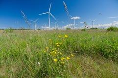 Turbinas de viento debajo del cielo azul Fotografía de archivo libre de regalías