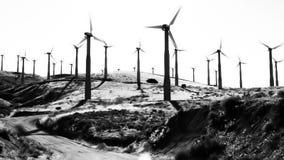 Turbinas de viento del alto contraste metrajes