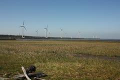 Turbinas de viento en campo de hierba Imagen de archivo libre de regalías