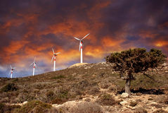 Turbinas de viento en el movimiento Imagen de archivo libre de regalías