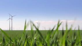 Turbinas de viento en un campo verde metrajes