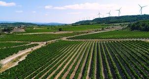 Turbinas de viento en una colina con los campos y las vides almacen de video