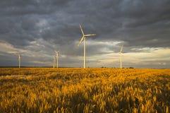 Turbinas de viento, energía pura, molinoes de viento en los campos Imágenes de archivo libres de regalías