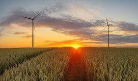 Turbinas de viento, energía pura, molinoes de viento en los campos Foto de archivo
