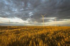 Turbinas de viento, energía pura, molinoes de viento en los campos Imagenes de archivo