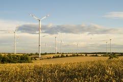 Turbinas de viento, energía pura, molinoes de viento en los campos Foto de archivo libre de regalías