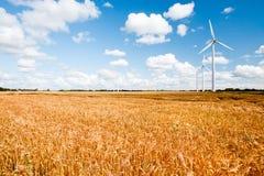 Turbinas de viento a lo largo del campo de trigo Fotografía de archivo