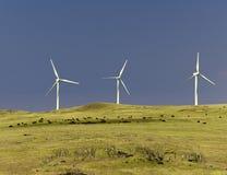 Turbinas de viento, pasto, punta del sur, Hawaii Imagen de archivo libre de regalías